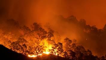 """schwere gesundheitliche folgen - """"niemand ist sicher"""": forscher veröffentlichen alarmierenden klima-bericht"""