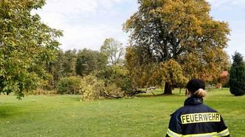Feuerwehren rücken wegen umgekippter Bäume aus