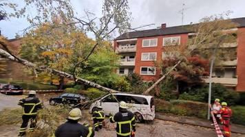 Sturm Hendrik in Hamburg: Baum fällt auf Auto und Mehrfamilienhaus