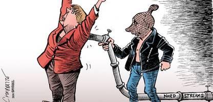 cartoons der woche von thomas plaßmann, klaus stuttmann und chappatte