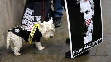 Wikileaks-Gründer - Auslieferung von Julian Assange: Anhörung in London